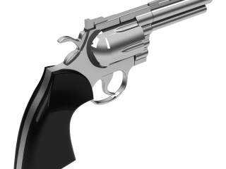 Security and Strategies for Counteracting the Mass Shooter Threat